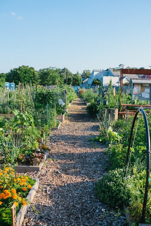 Fox Point Community Garden