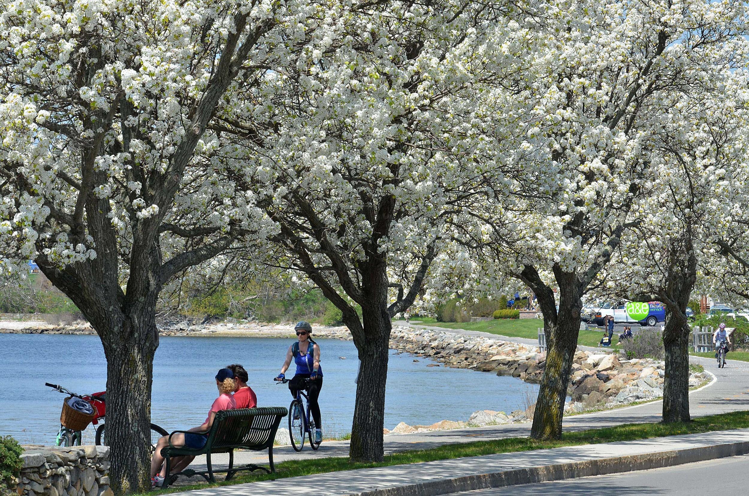 Most scenic' designation could help boost tourism to Bristol   RhodyBeat
