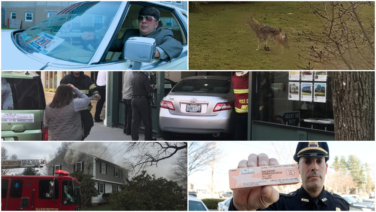 Take a look at some of the top stories this week from around the East Bay