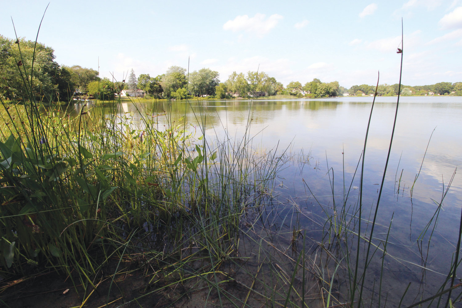 HIDDEN DANGER: It may look idyllic, but the possible health issues you could encounter from swimming in an algae bloom are anything but. Little Pond in Warwick is the most recent water body to warrant an advisory from DEM regarding the harmful bacteria.