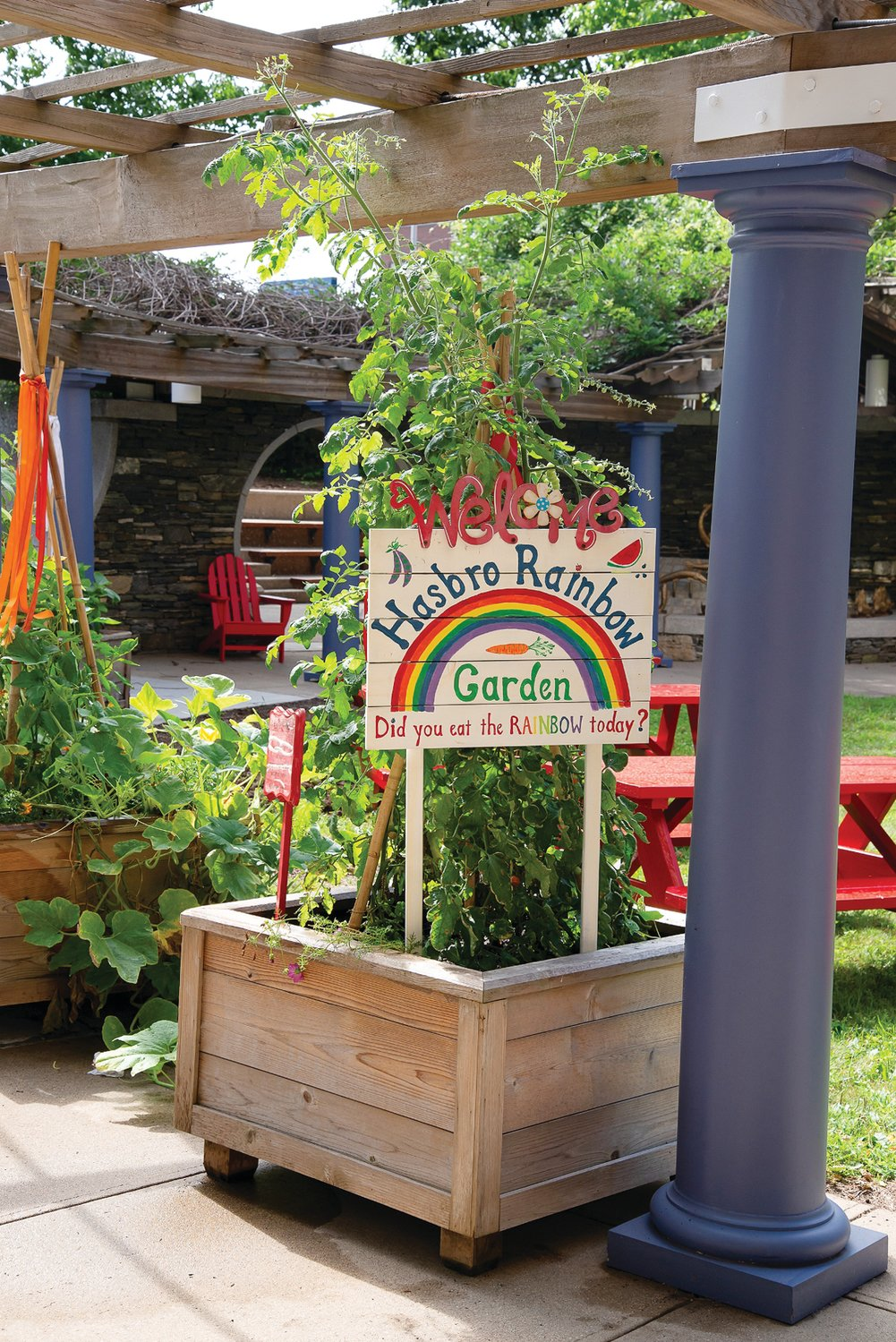 A GARDEN GROWS: Upon entering the area, patients and families are greeted by a teaching garden with raised beds, each housing vegetables and herbs according to their colors and characteristics.