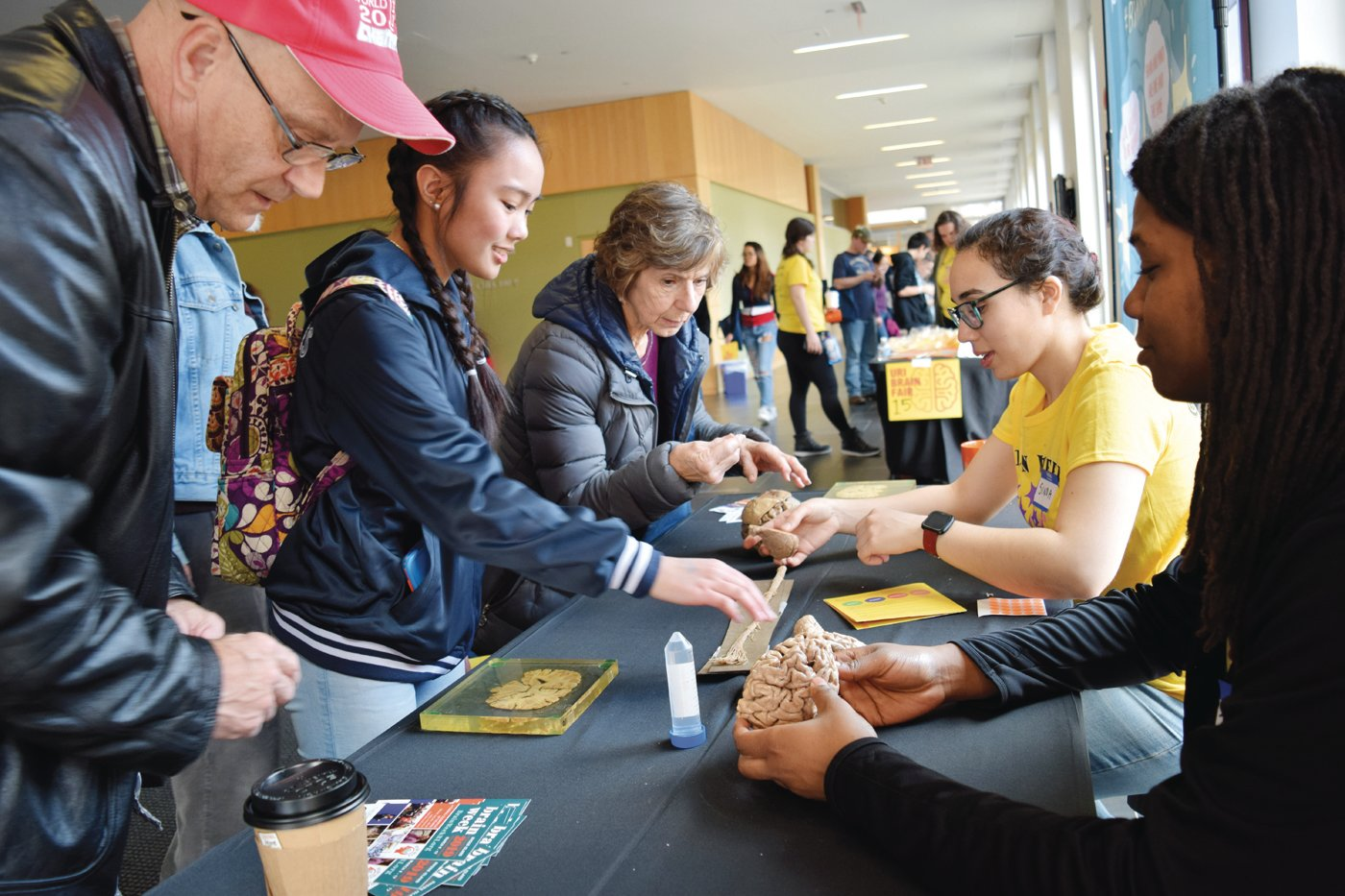 SMART STUFF: Attendees to the 2019 URI Brain Fair learn about parts of the brain and spinal cord.