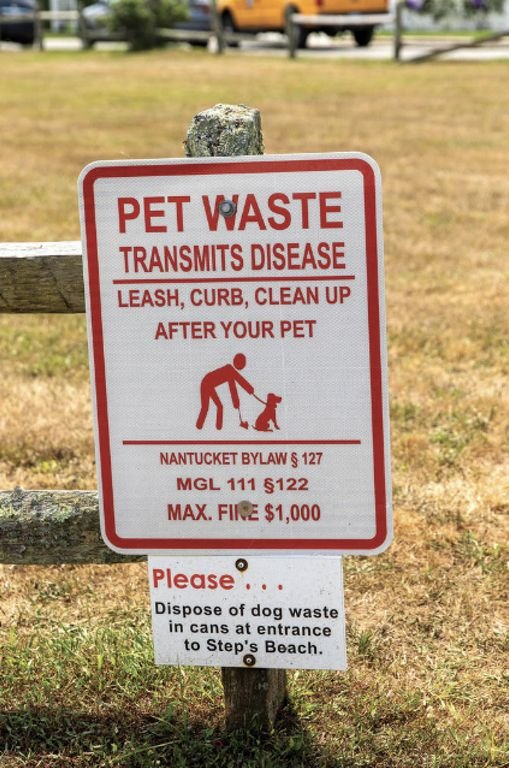 Signage on Lincoln Avenue urging pet owners to clean up after their animals and dispose of the waste properly.