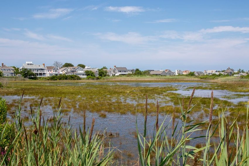 This wetland between Hulbert Avenue and Easton Street, which is owned by the Nantucket Conservation Foundation, is regularly flooding into the street at high tide.