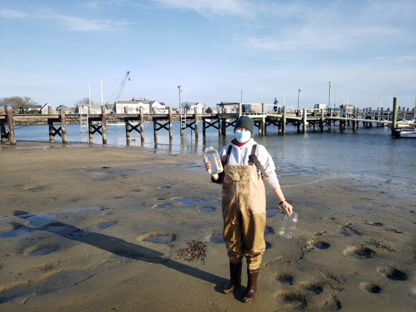 UMass Field Station director Yvonne Vaillencourt takes samples of harbor water in mason jars to sample for microscopic traces of broken-up plastic, which have been shown to be a significant coastal pollutant worldwide.