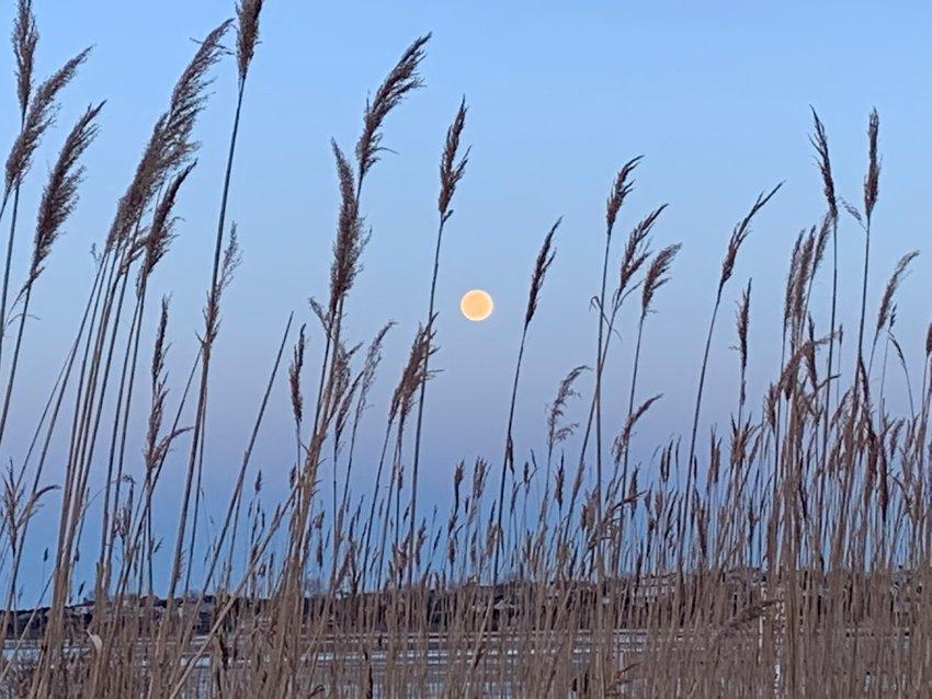 The snow moon over Nantucket.