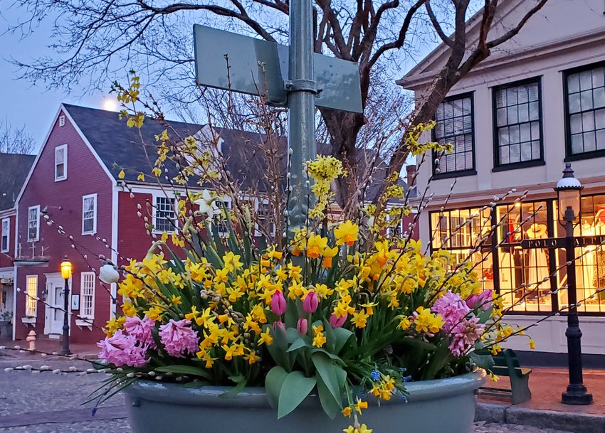 The Main Street fountain at twilight.