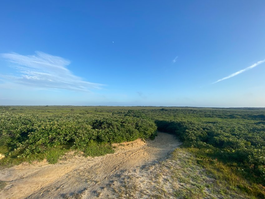 The Nantucket Conservation Foundation's Serengeti property as seen from the southern end of the island's terminal moraine in the Middle Moors.