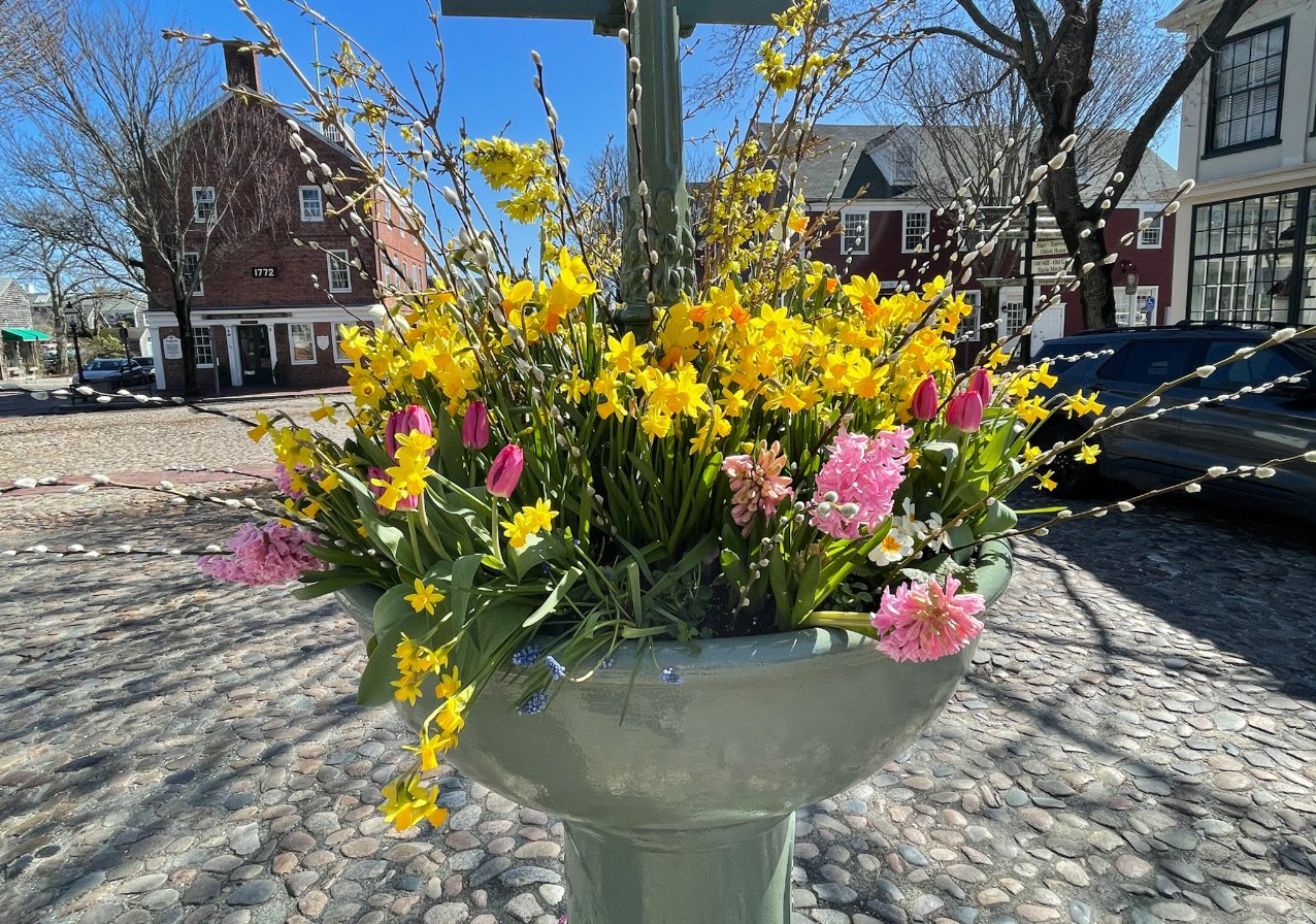 The Main Street fountain, decorated for spring by Heidi Drew and Jill Sandole of the Nantucket Garden Club Saturday.