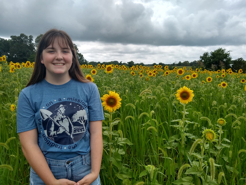 Lily's Sunflowers