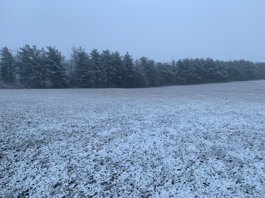 A LIGHT SNOWFALL covers a field and a line of evergreen trees in Ozark in January 2021.