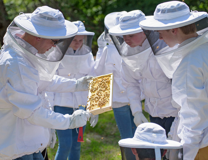 Students at St. Augustine's School in Ossining gather around their teacher John Gallagher during a routine hive inspection May 20. The students are part of a beekeeping club at the school that began meeting last month. The school has two honeybee hives located on 35-acre property grounds behind the church rectory.