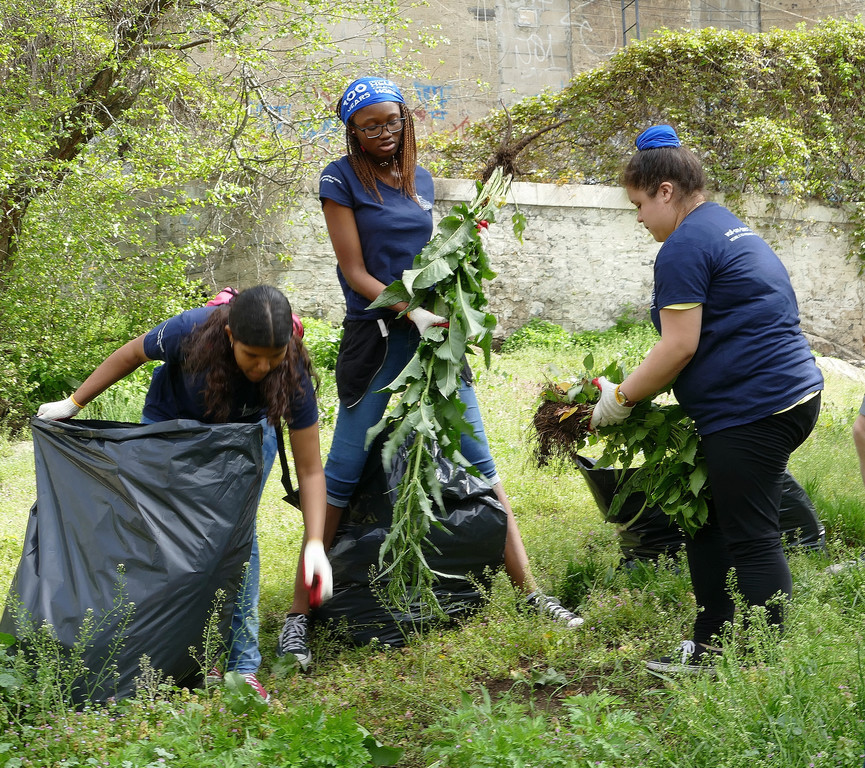 Volunteers bag weeds during the first Archdiocesan Day of Service on April 29.