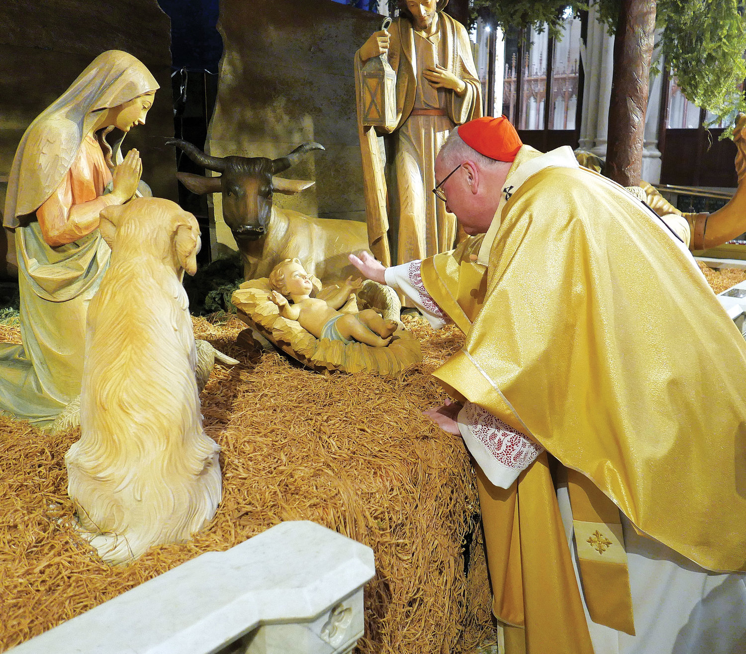 Cardinal Dolan gently places the figure of the baby Jesus in the crèche at the beginning of Christmas Midnight Mass at St. Patrick's Cathedral in Manhattan Dec. 25.