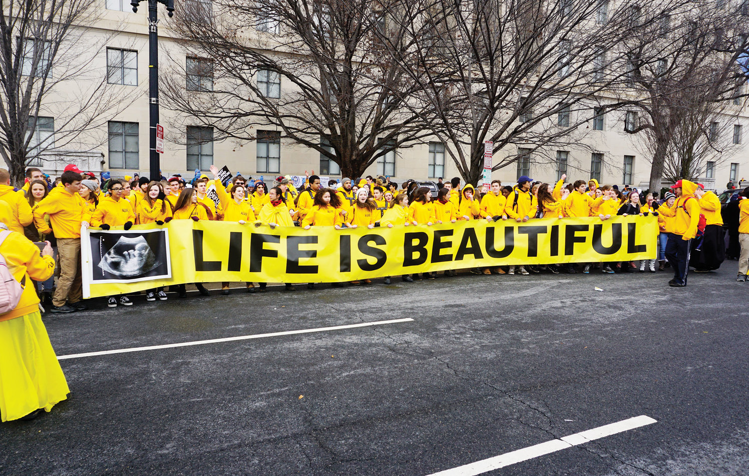 The Archdiocese of New York sent about 1,800 pilgrims to this year's March for Life in Washington D.C. The rally and march occurred Jan. 18. Members of Crusaders for Life, a Chicago-based group, top photo, display a large Life Is Beautiful banner during the event.
