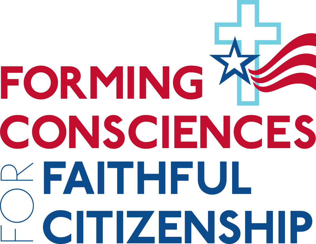 "NAVIGATE—This logo appears on materials, study guides and videos related to the U.S. bishops' quadrennial ""Faithful Citizenship"" document that provides guidance to voters during a presidential election year."