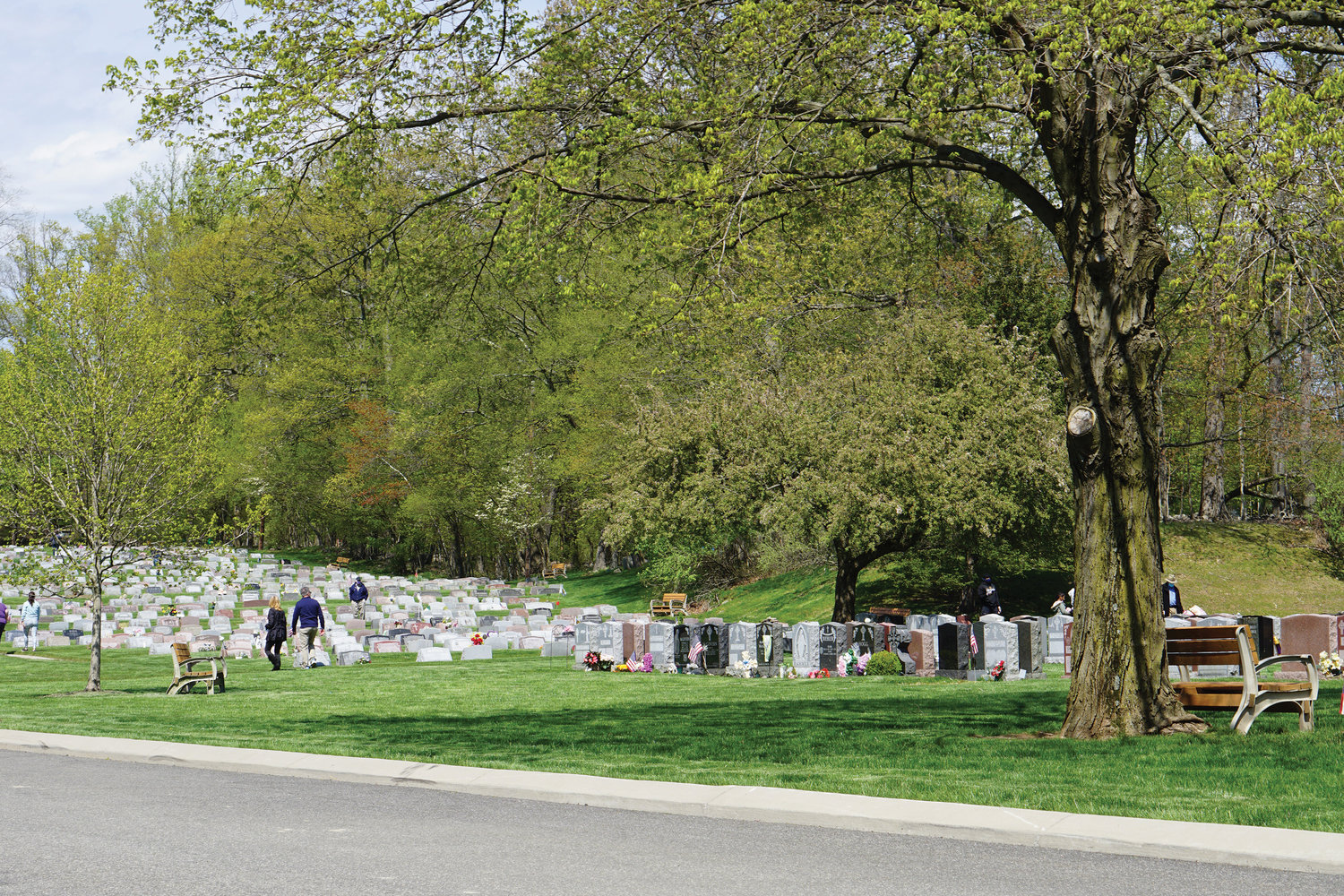 With a tree's branches displaying springtime growth, visitors are spread throughout at Ascension Cemetery in Airmont.