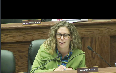 Rep. Teresa Tanzi, a member of the House Committee on Oversight, raised questions about one of her constituents, who had recently given birth but had been unable to have her SNAP benefits renewed, despite more than six weeks attempting to do so.