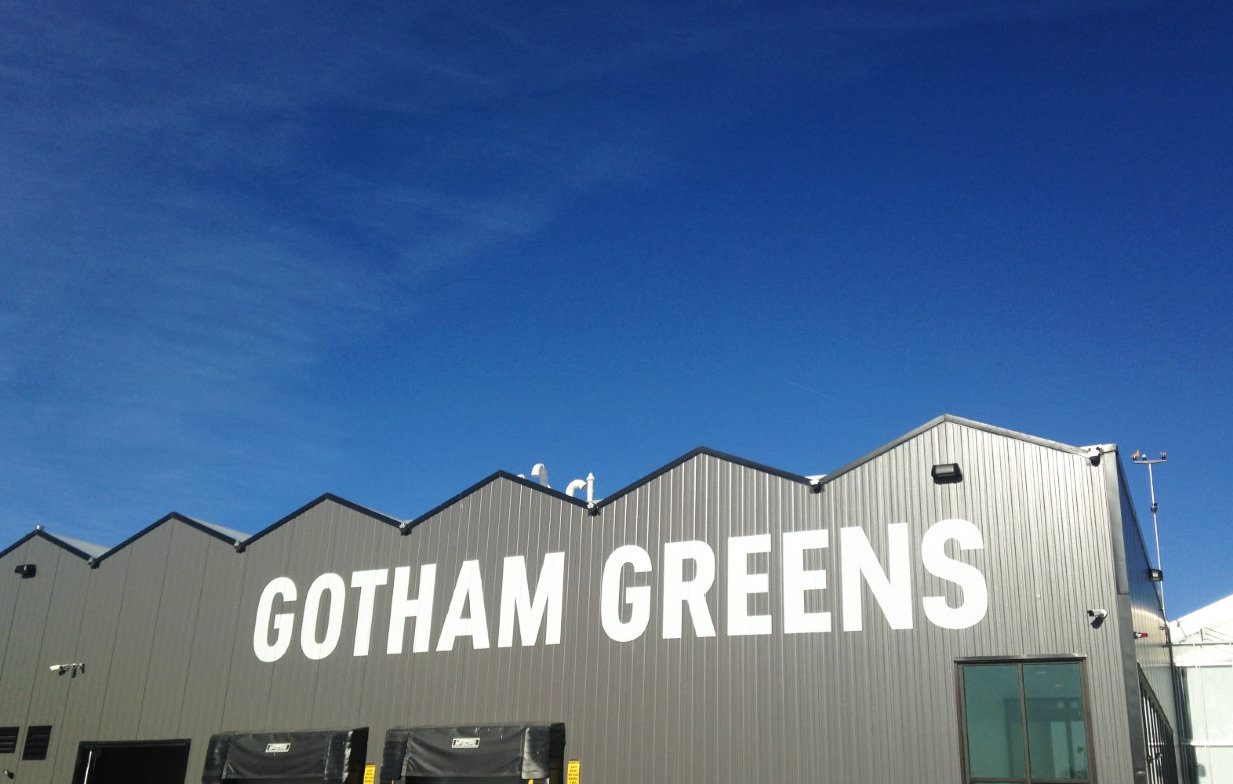The new Gotham Greens high-tech greenhouse in Olneyville.