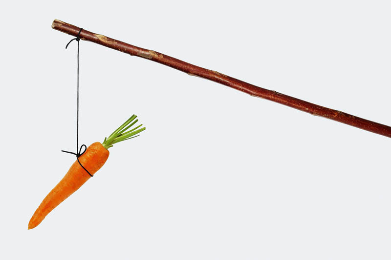 Stick with carrot on string isolated on white