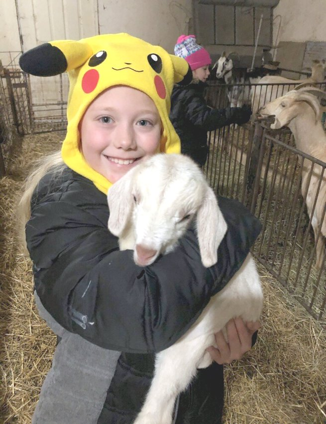 Brad's eight-year-old granddaughter, Alexis Young, enjoys snuggling a young goat.