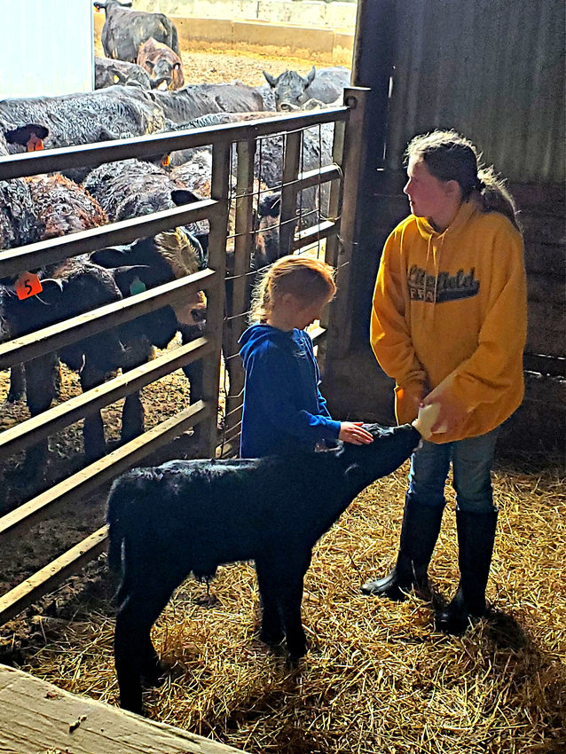 Payton (left) and Allison (right) Belusko enjoy bottle feeding a new calf on the family farm.