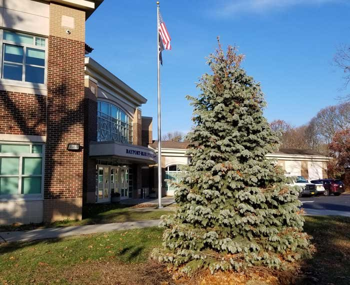 The tree used for the Bayport-Blue Point Chamber's annual Christmas Tree Lighting was donated at cost by Bayport Flower Houses to Matt Allen's Life Account Project in 2018.