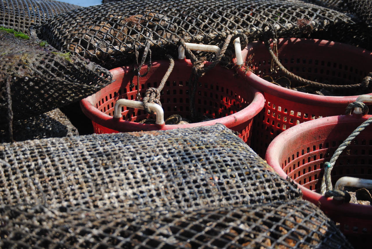 Buckets of oyster shells sit on a vessel in August prior to their release into the Great South Bay.