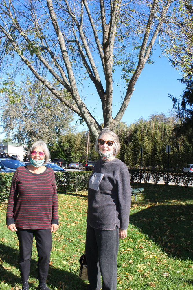 Bellport Garden Club Beautification Committee members Sherry Binnington and Evonne Hammond stand in front of one of 20 ash trees they are hoping to save.