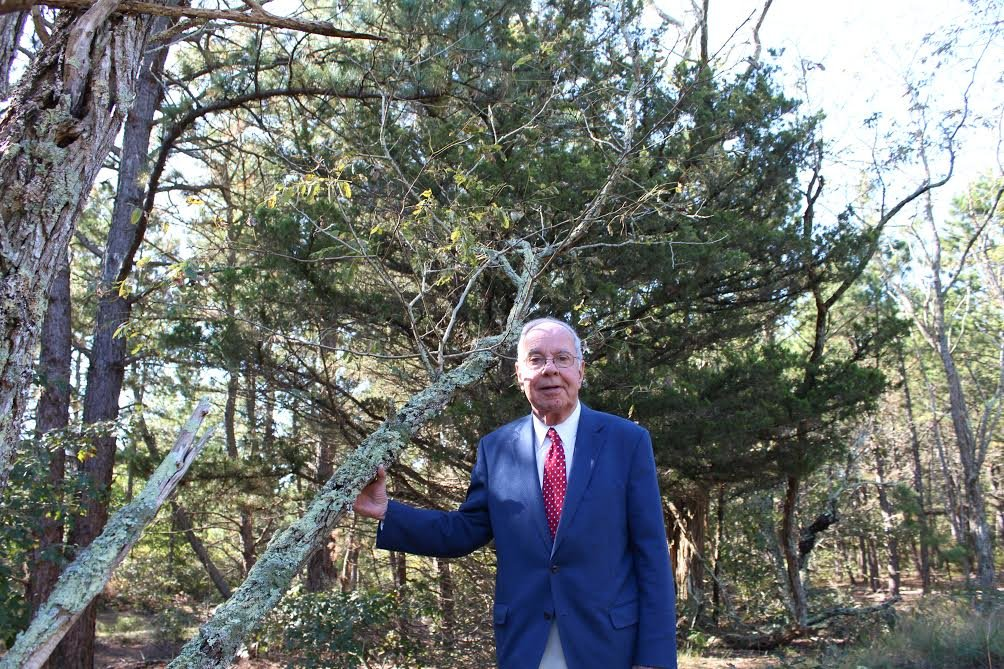 Richard Amper, executive director of the Long Island Pine Barrens Society, at the David F. Sarnoff Preserve in Riverhead.