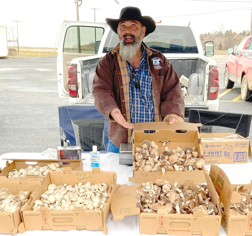 """VENDOR BRIAN SMOLNICK, of Bella Springs Mushroom Farm, often brings 50 to 60 pounds of mushrooms to sell at """"Go Farm Farmer's Market."""" The market is held from 9 a.m. to 1 p.m. Saturdays in the Endurance Church parking lot off of Worley Drive in West Plains."""