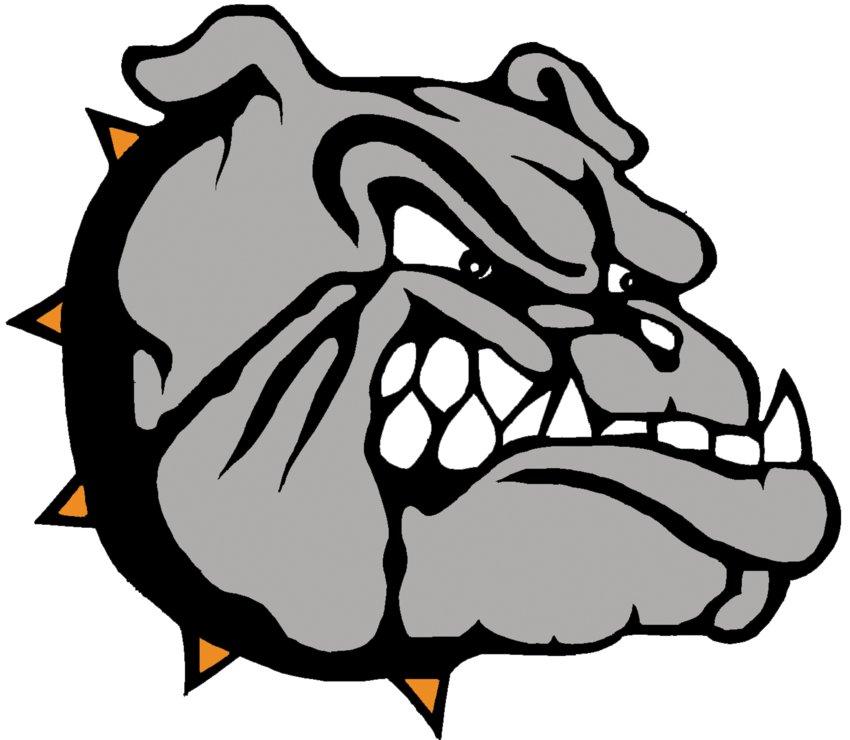 Wayne Bulldog
