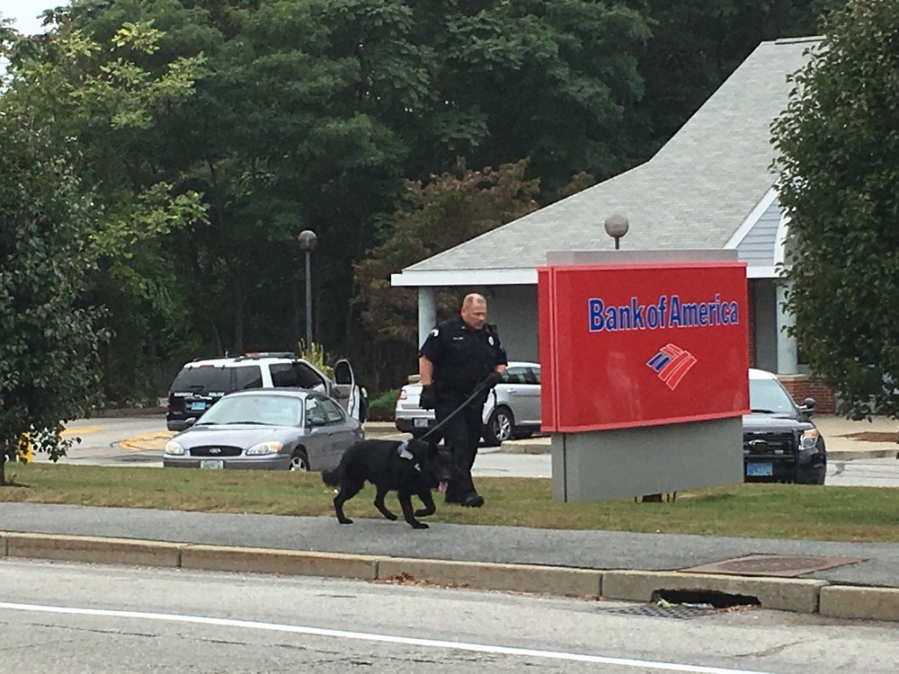 SEARCHING FOR A SUSPECT: Warwick's canine unit was on scene searching for the bank robbery suspect Wednesday afternoon, but no trail was found.