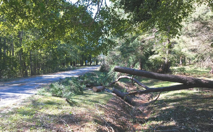 Person County and the city of Roxboro are eligible to apply for disaster relief in the wake of Hurricane Florence to pay for the cost of such things as post-storm clean up. johnny whitfield | courier-times