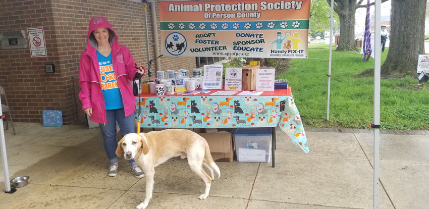 An Animal Protection Society volunteer and rescue dog Buddy at an APS event at the Person County Library.