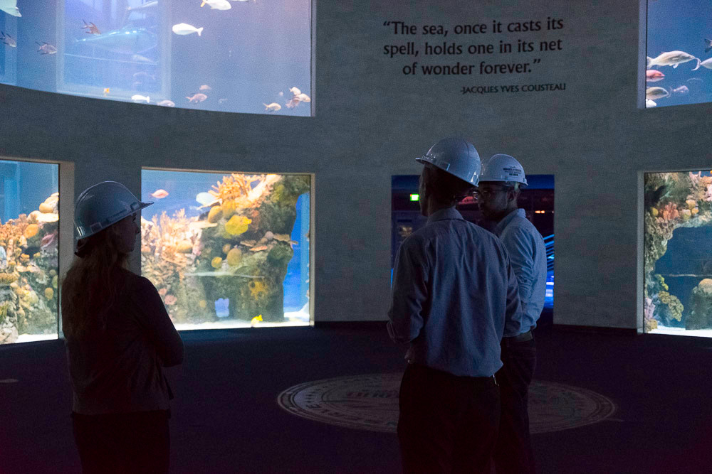Members of the media were invited Sept. 15 to preview Wonders of Wildlife National Museum and Aquarium. Pictured here are photos from the Great Oceans Hall. The centerpiece is a two-story, circular tank that allows visitors to stand in the middle and watch deep-ocean saltwater fish travel around. The lights are kept low so the tank, with over 100,000 gallons and living coral reefs, can shine bright.