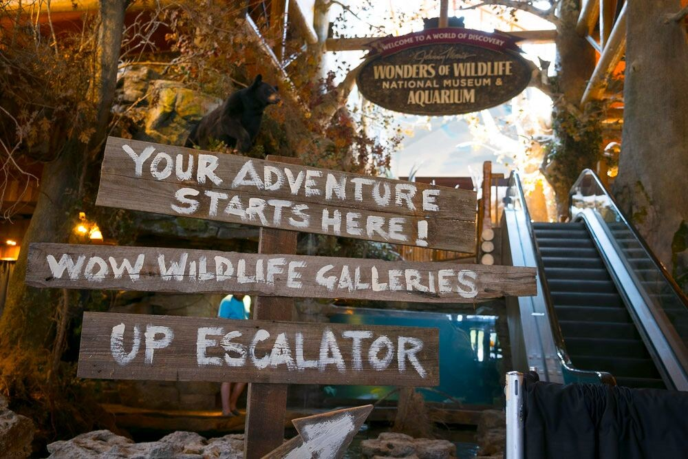 Wonders of Wildlife guests will enter through Bass Pro Shops' main entrance on South Campbell Avenue and then travel up an escalator to the ticket booths.