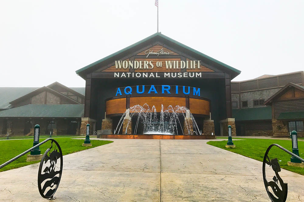 Wonders of Wildlife ranks No. 1 this morning on USA Today's poll of the best new attractions.