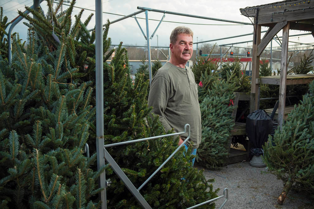 EVER GREEN: Owner Mark Wheeler expects to sell 450 Christmas trees this year.
