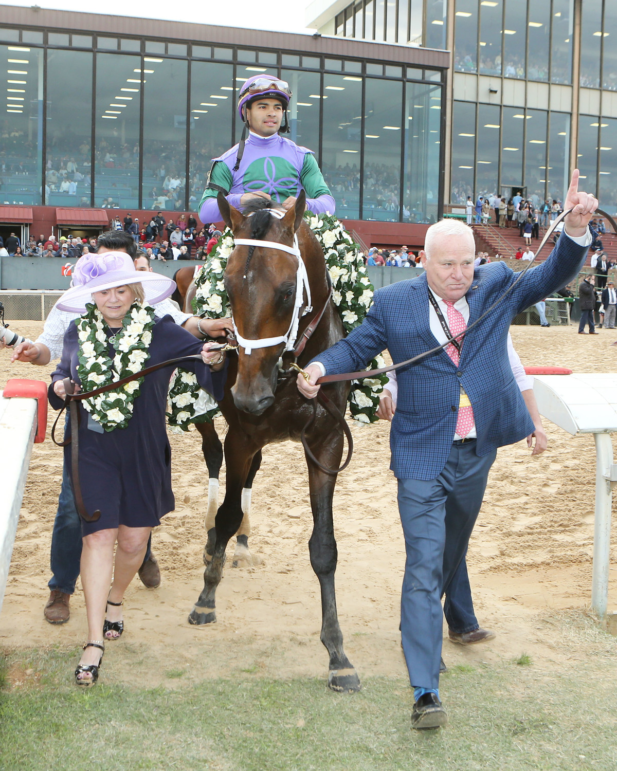 TO THE RACES
