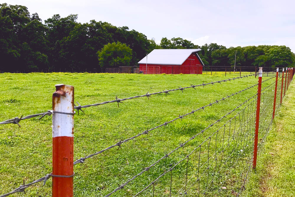FERTILE GROUND: This 2-acre farm in Bentonville, Arkansas, is under the care of Adam Millsap and Melissa Young-Millsap.