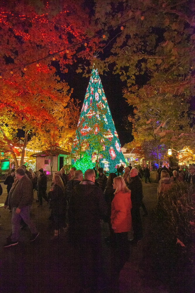 LET THERE BE LIGHT: Silver Dollar City on Nov. 1 unveiled its new $1.5 million Christmas tree and light show.