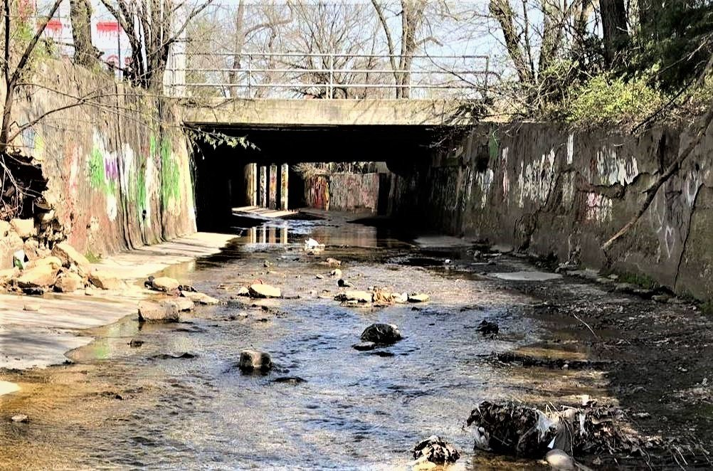 Officials are calling on engineering and architecture firms to submit proposals on uncovering Jordan Creek downtown.
