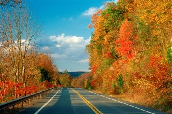 """An abundance of fall foliage helps make the Upper Delaware Scenic Byway """"the most scenic drive in the Northeast."""""""