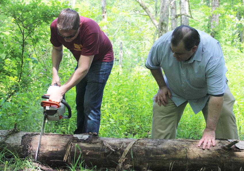 NYS Senator Mike Martucci and Sullivan County Legislative Chairman Rob Doherty work together to cut up a tree.