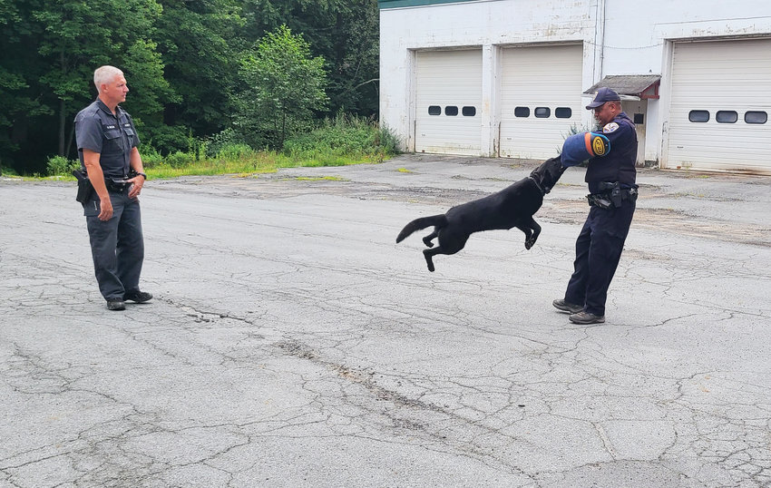 Under the watchful gaze of New York State Trooper Pete Bizjak, long time Town of Highland Constable Marc Anthony demonstrates the power of Trooper Bizjak's K-9 Versa during the recent presentation of NYS Canine Program at the Sunshine Hall Free Library in Eldred. We are happy to report that neither Versa or Officer Anthony were injured during the very impressive demonstration.