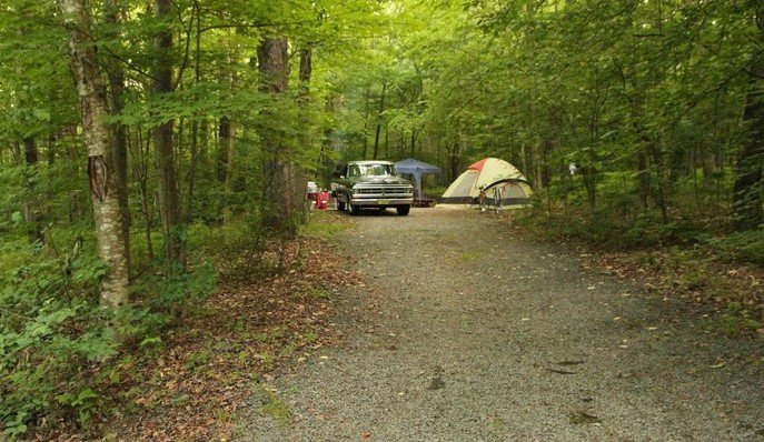 This tent campsite is one of 67 sites located at the Little Pond Campground located in the Catskill Forest Preserve.