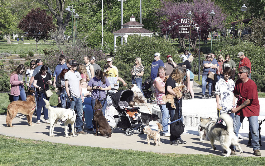 Participants wait in line for vaccinations and microchips given by veterinarians inside Convention Hall in April 2018 during Sedalia Parks and Recreation Department's Yappy Hour event.