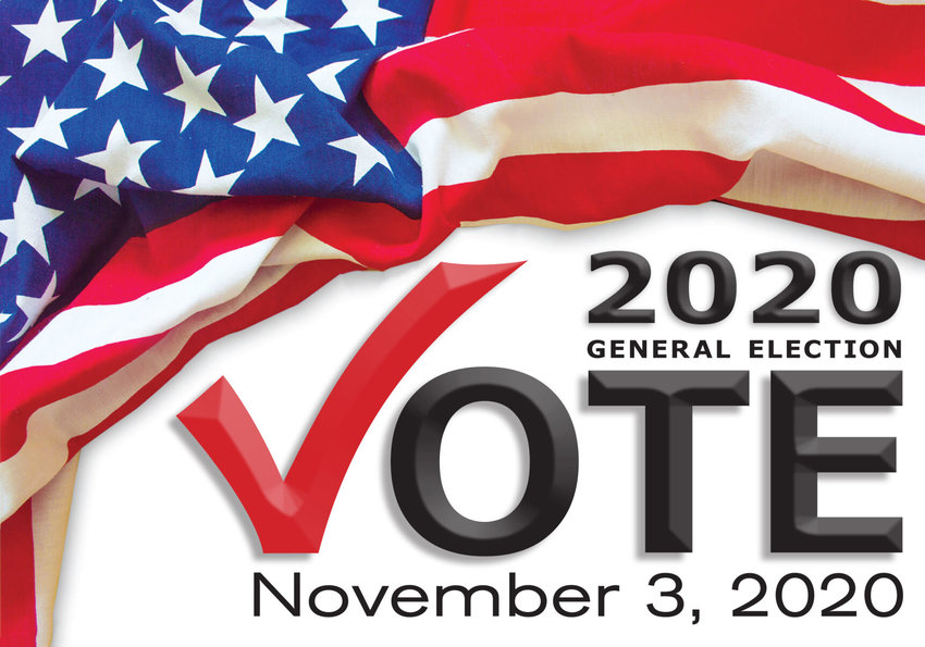 Vote November General Election logo