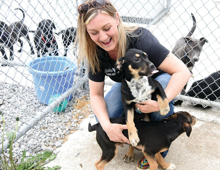 Sedalia Animal Shelter Manager Randi Battson smiles at the antics of two puppies Wednesday morning at the Shelter. Staff and animals alike are grateful for a large donation of goods organized by students of the Smith-Cotton High School DECA Club.
